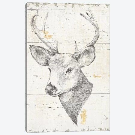 Wild & Beautiful II Canvas Print #WAC6043} by Daphne Brissonnet Canvas Art