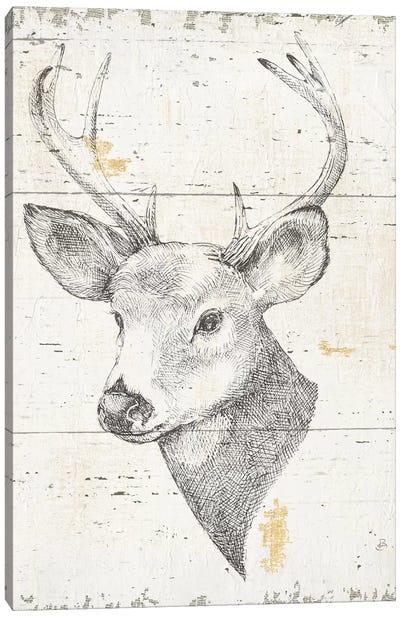 Wild & Beautiful II Canvas Art Print