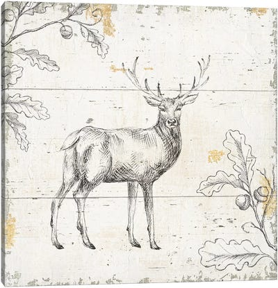 Wild & Beautiful V Canvas Art Print