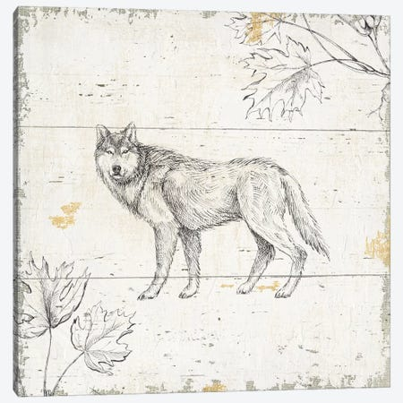 Wild & Beautiful VIII Canvas Print #WAC6049} by Daphne Brissonnet Canvas Wall Art