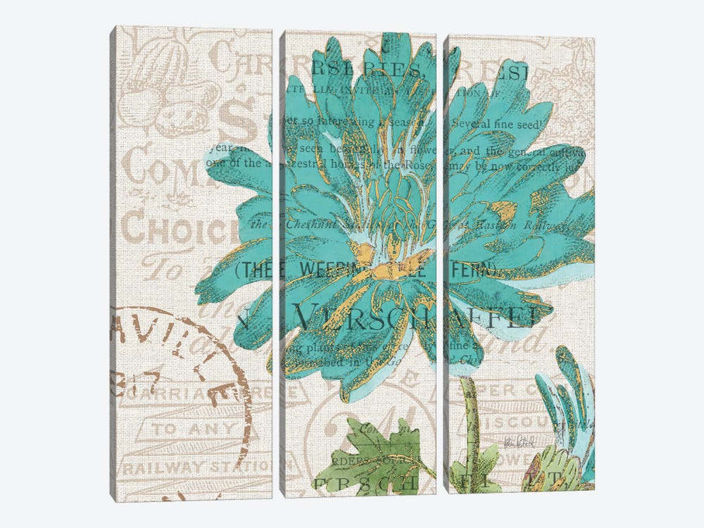 Bookshelf Botanical IV by Katie Pertiet 3-piece Canvas Print