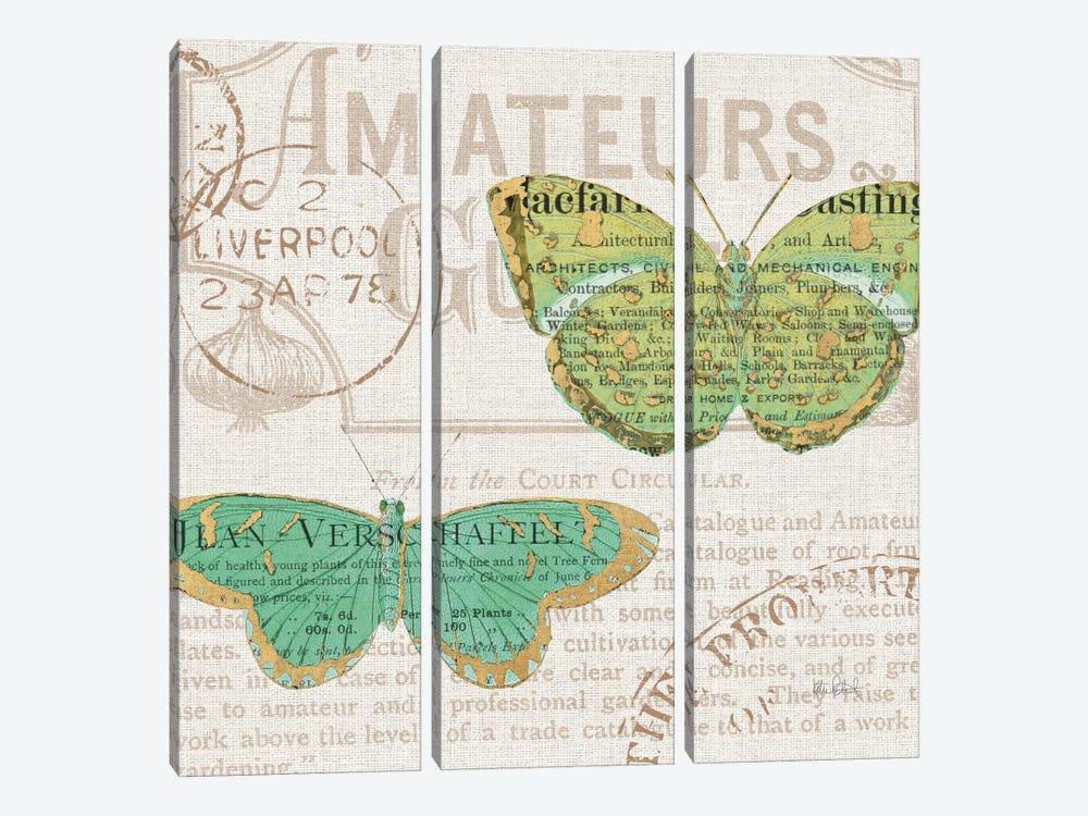 Bookshelf Botanical IX by Katie Pertiet 3-piece Canvas Art