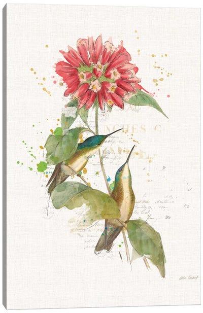 Colorful Hummingbirds I Canvas Print #WAC6094