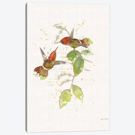 Colorful Hummingbirds II Canvas Print #WAC6095} by Katie Pertiet Canvas Wall Art