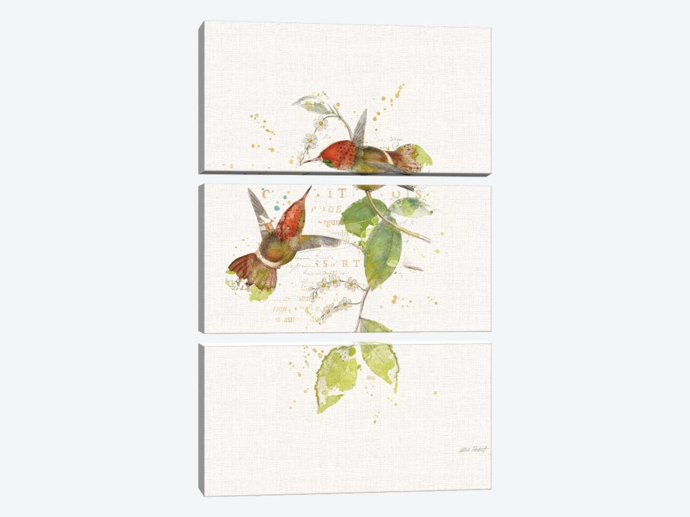 Colorful Hummingbirds II by Katie Pertiet 3-piece Canvas Wall Art