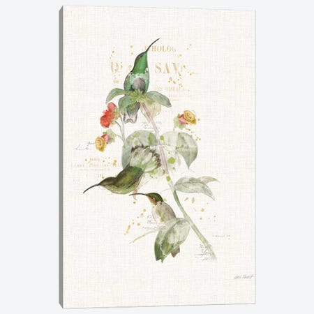 Colorful Hummingbirds III Canvas Print #WAC6096} by Katie Pertiet Canvas Artwork