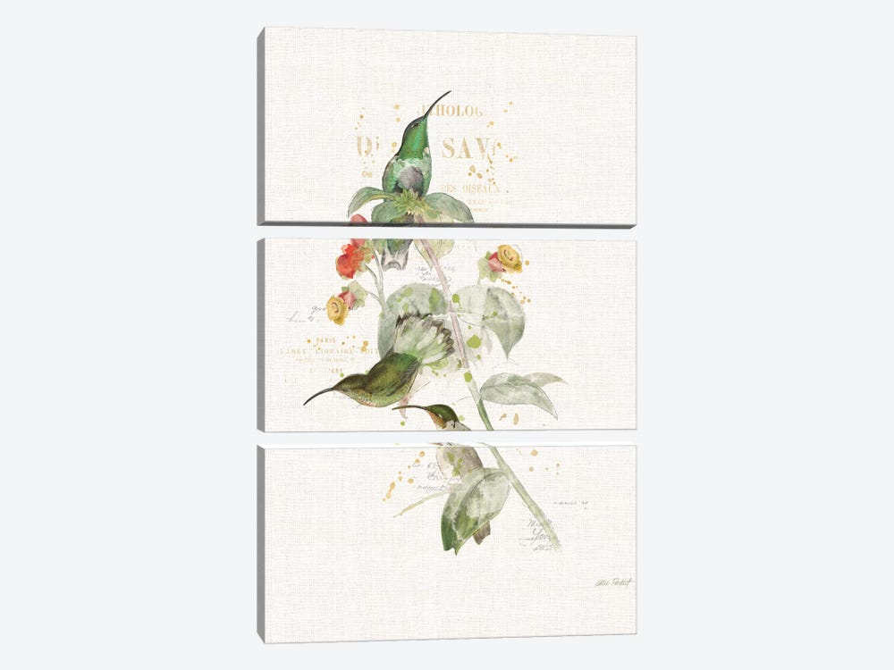 Colorful Hummingbirds III by Katie Pertiet 3-piece Canvas Art Print