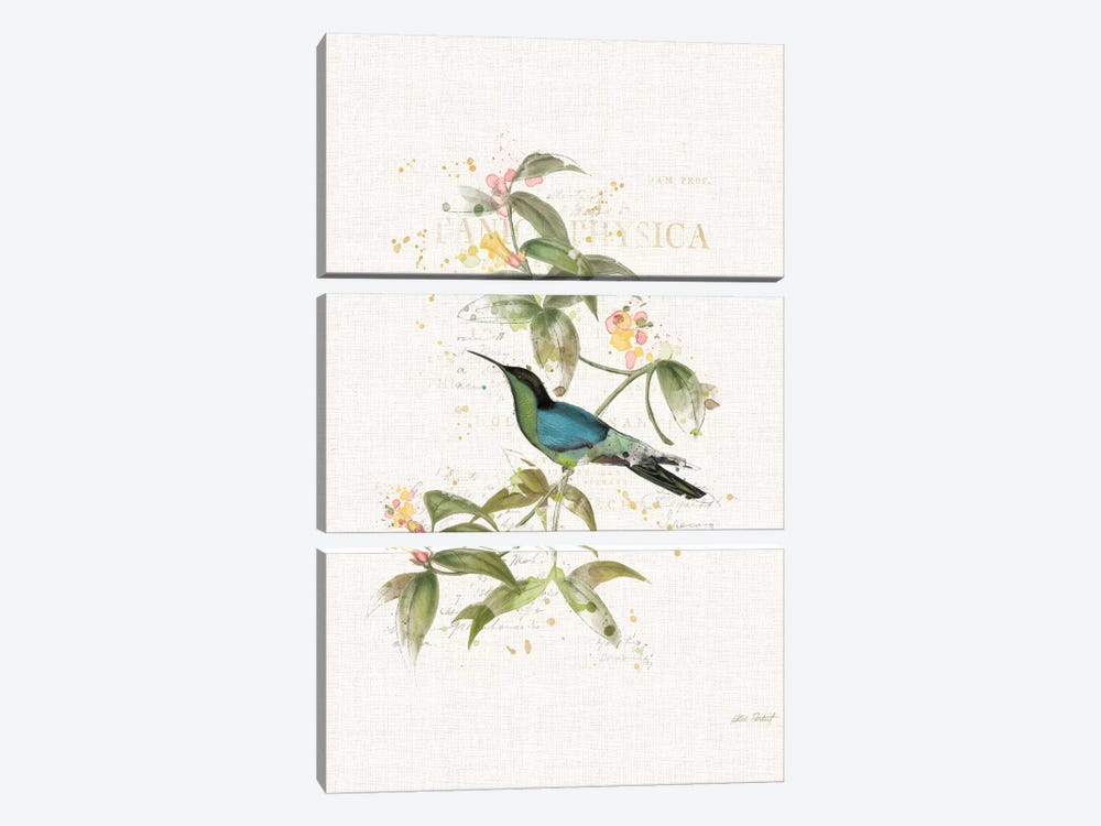 Colorful Hummingbirds IV by Katie Pertiet 3-piece Canvas Art