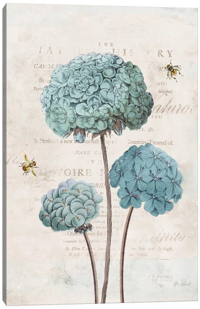 Geranium Study I Canvas Art Print