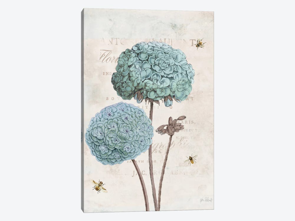 Geranium Study II by Katie Pertiet 1-piece Canvas Art