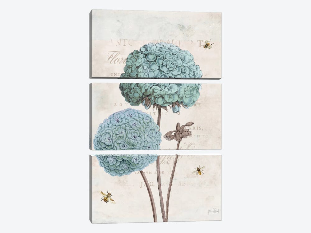 Geranium Study II by Katie Pertiet 3-piece Canvas Art