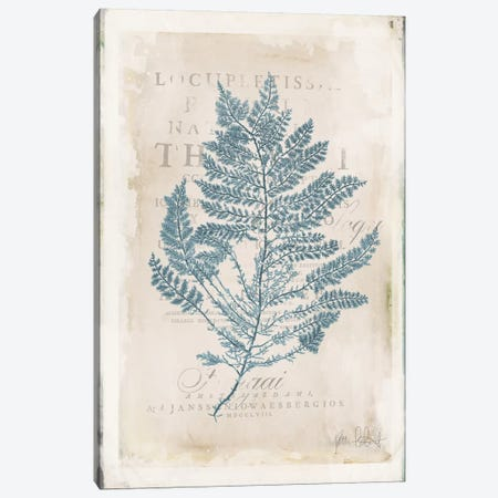 Sea Garden III Canvas Print #WAC6108} by Katie Pertiet Art Print