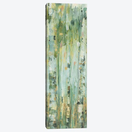 The Forest V Canvas Print #WAC6125} by Lisa Audit Canvas Artwork