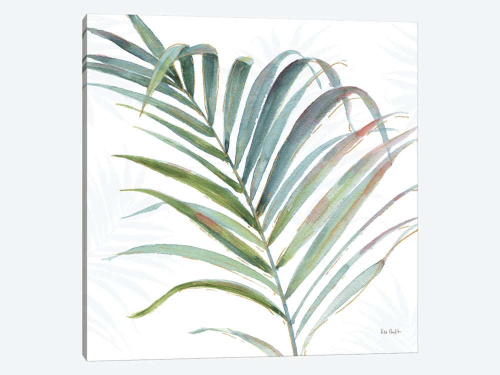 Tropical Blush V by Lisa Audit 1-piece Art Print