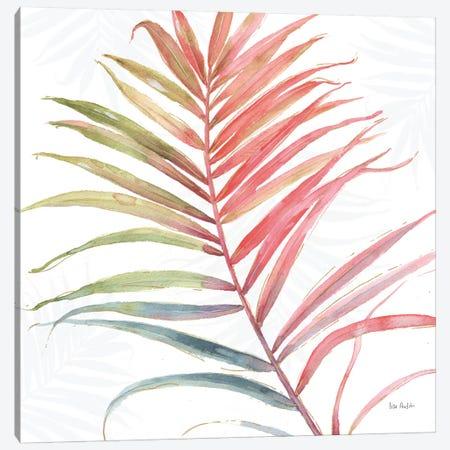 Tropical Blush VI Canvas Print #WAC6127} by Lisa Audit Canvas Art