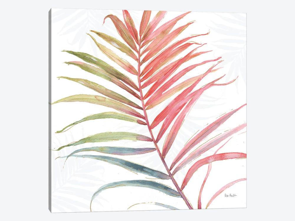 Tropical Blush VI by Lisa Audit 1-piece Canvas Art