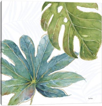 Tropical Blush VII Canvas Art Print