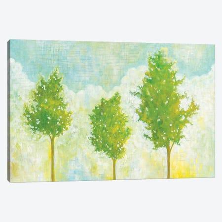 Golden Hour I Canvas Print #WAC6137} by Melissa Averinos Art Print