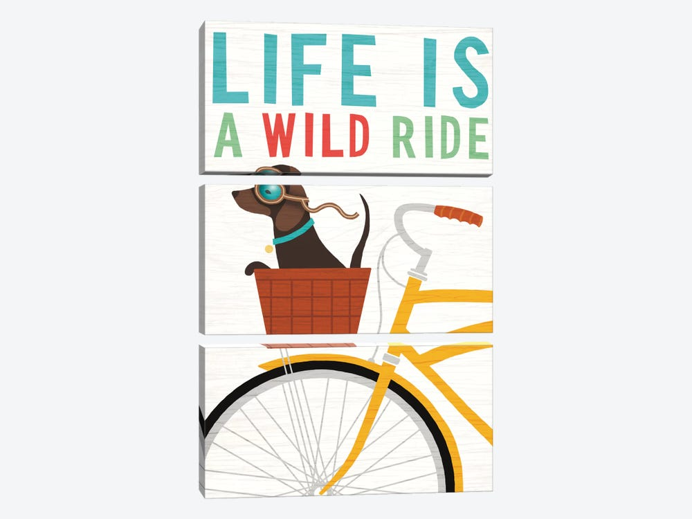 Dachshund Bicycle II by Michael Mullan 3-piece Canvas Print