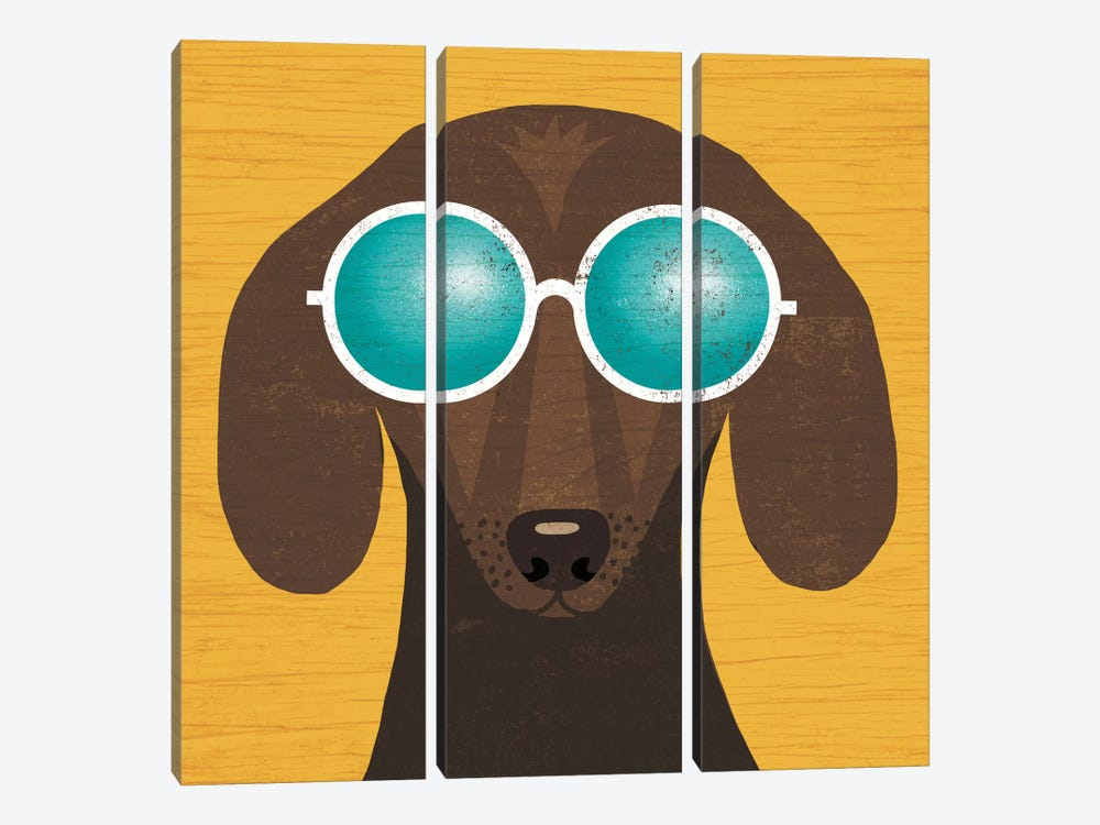 Dachshund I by Michael Mullan 3-piece Canvas Art