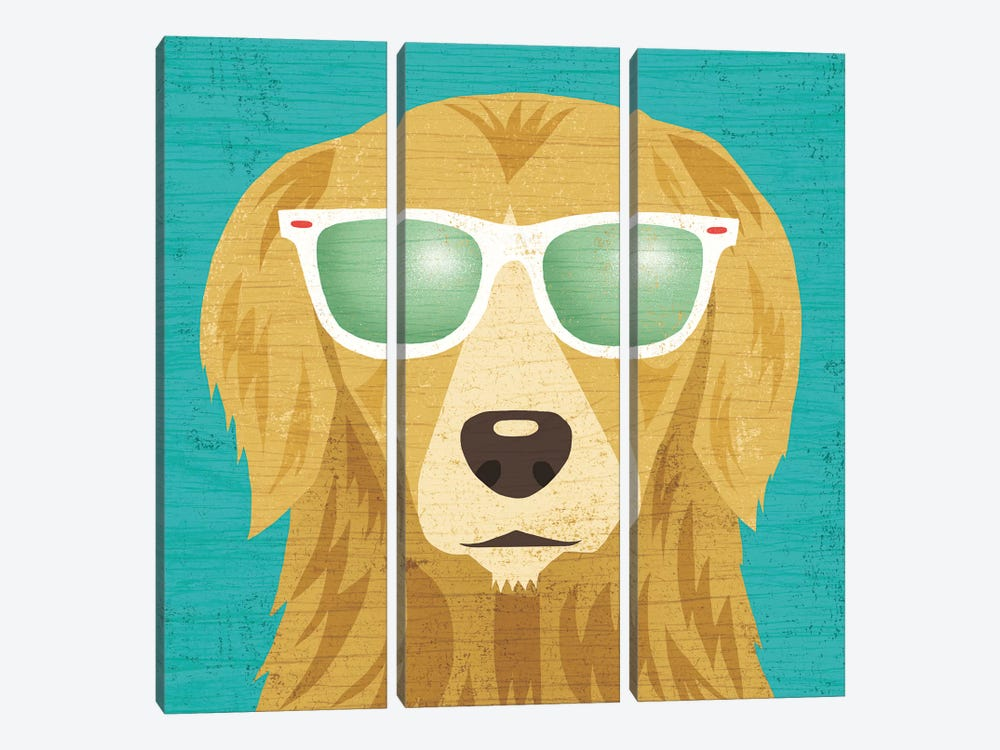 Golden Retriever I by Michael Mullan 3-piece Canvas Wall Art