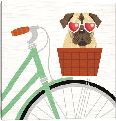 Beach Bums Series: Pug Bicycle I Canvas Print #WAC6151