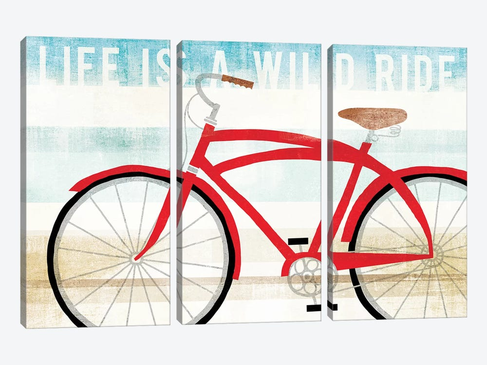 Life Is A Wild Ride by Michael Mullan 3-piece Canvas Art