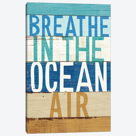Beachscape Inspiration V Canvas Print #WAC6199} by Michael Mullan Canvas Art