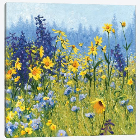 Joyful In July III Canvas Print #WAC6288} by Shirley Novak Canvas Wall Art