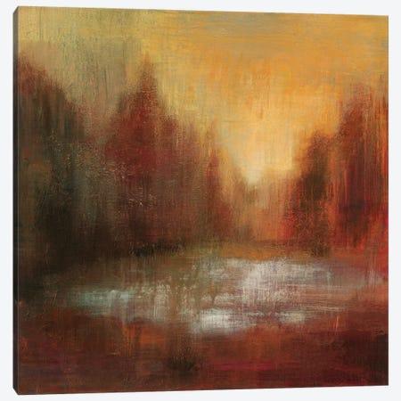 Rain I Canvas Print #WAC6308} by Silvia Vassileva Art Print