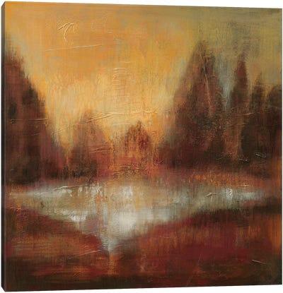 Rain II Canvas Print #WAC6309
