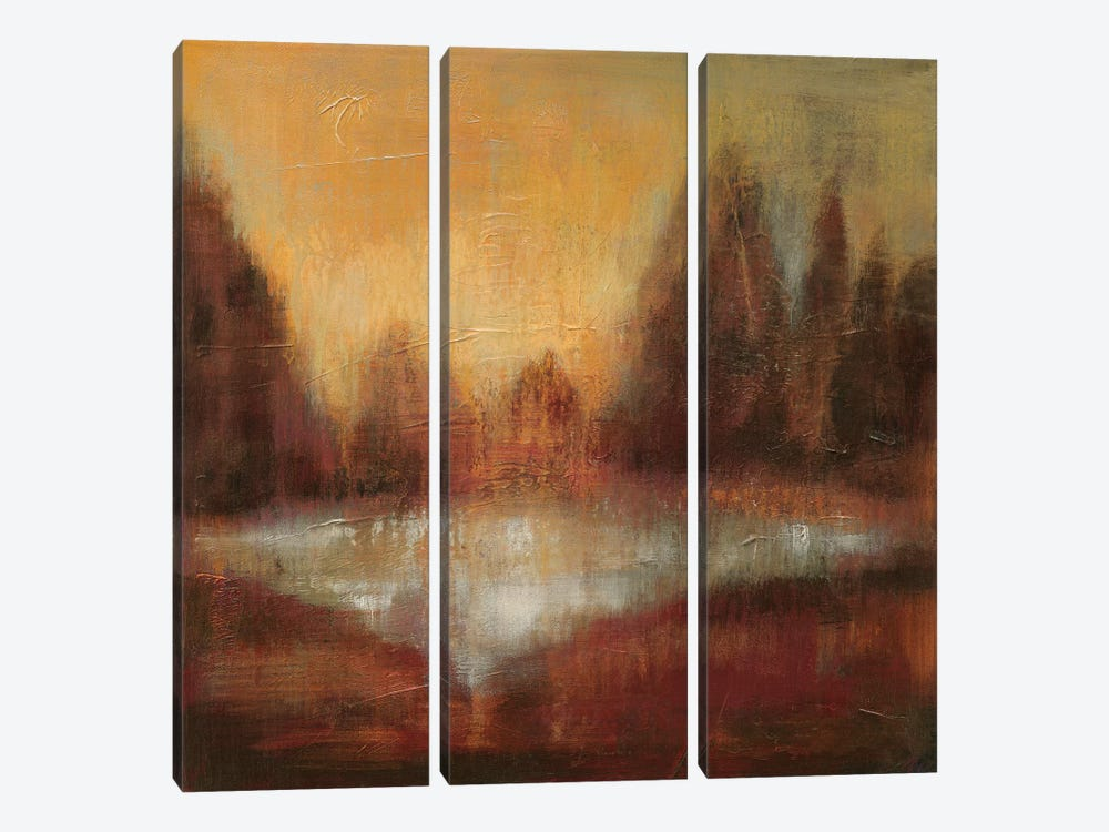Rain II by Silvia Vassileva 3-piece Art Print