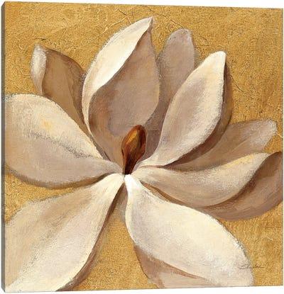 Sunset Flower I Canvas Print #WAC6314