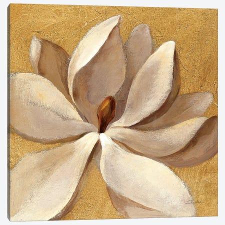 Sunset Flower I Canvas Print #WAC6314} by Silvia Vassileva Canvas Print