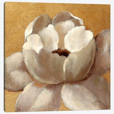 Sunset Flower II Canvas Print #WAC6315} by Silvia Vassileva Canvas Print