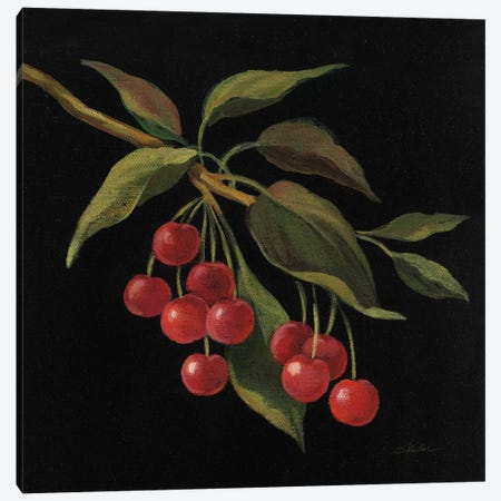 Cerise Canvas Print #WAC6355} by Silvia Vassileva Canvas Print