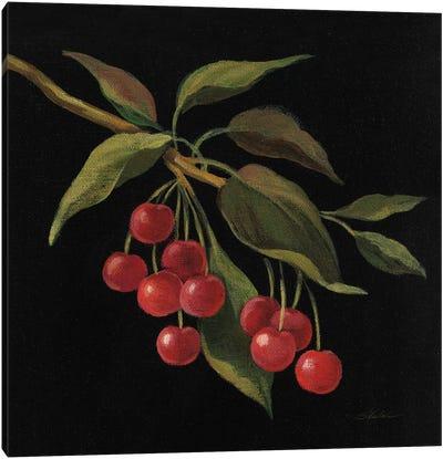 Cerise Canvas Art Print