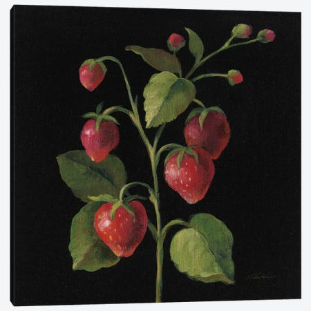Fraise Canvas Print #WAC6356} by Silvia Vassileva Canvas Print