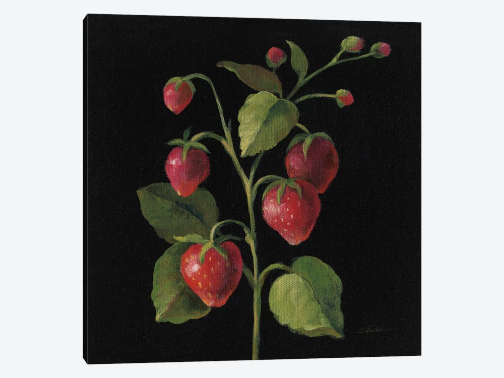 Fraise by Silvia Vassileva 1-piece Canvas Art Print
