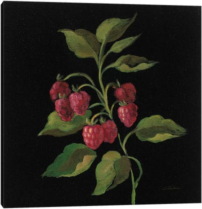 French Fruit Series: Framboise Canvas Print #WAC6357