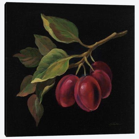 Prune Canvas Print #WAC6358} by Silvia Vassileva Canvas Artwork