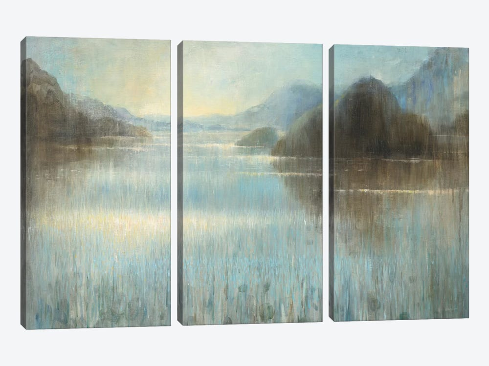 Through The Mist I by Danhui Nai 3-piece Canvas Artwork