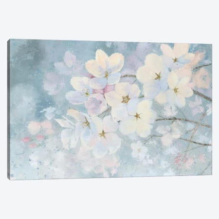 Splendid Bloom Canvas Print #WAC6390} by James Wiens Canvas Wall Art