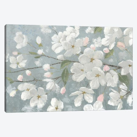 Spring Beautiful Canvas Print #WAC6391} by James Wiens Canvas Wall Art
