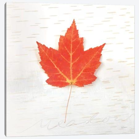 Autumn Colors I Canvas Print #WAC6405} by Sue Schlabach Art Print