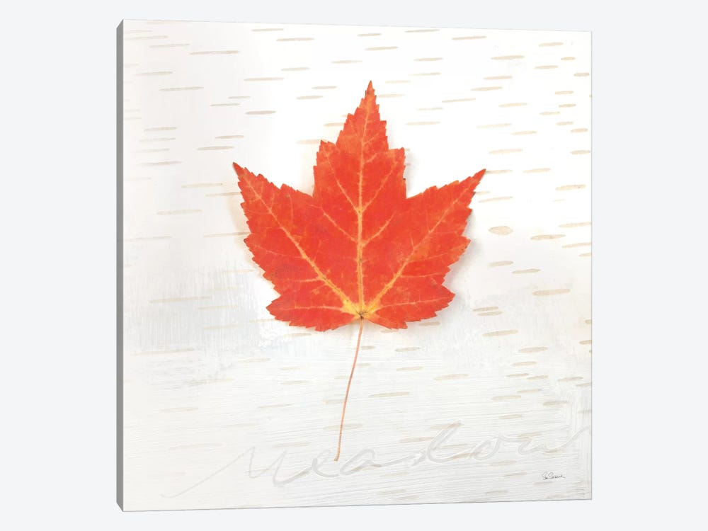 Autumn Colors I 1-piece Canvas Wall Art