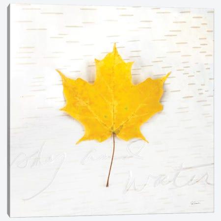 Autumn Colors II Canvas Print #WAC6406} by Sue Schlabach Canvas Print