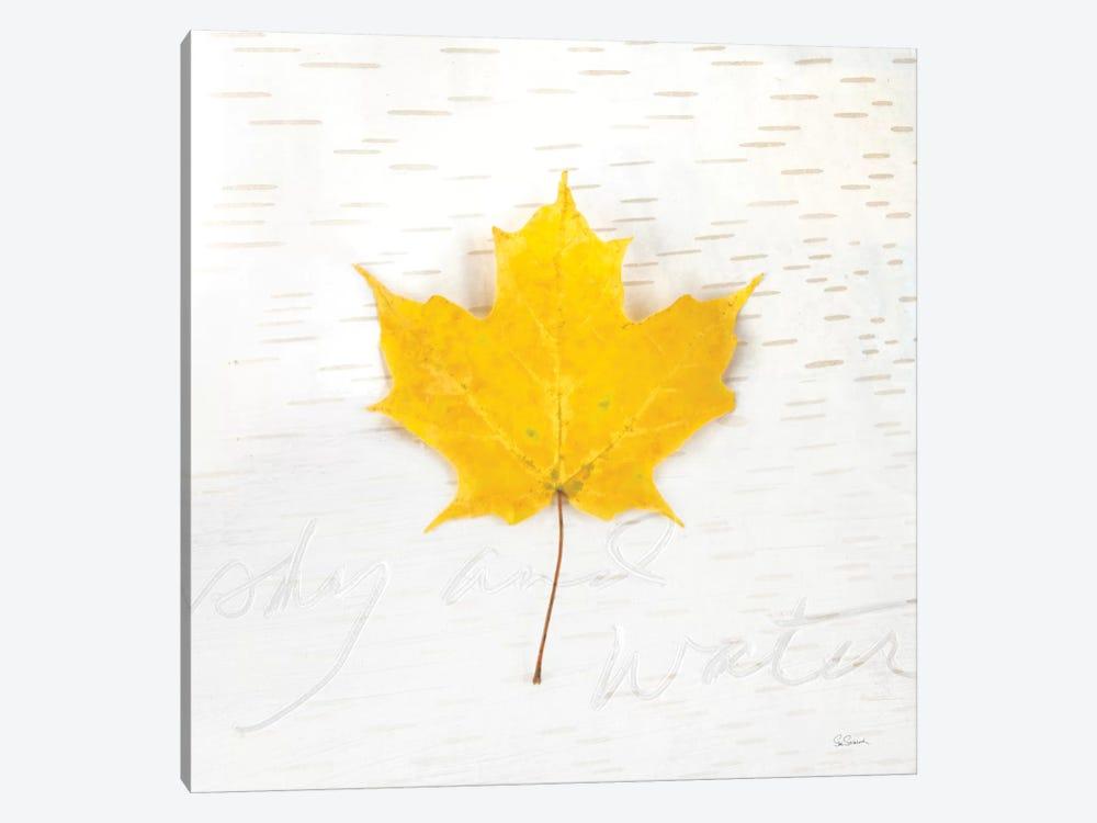 Autumn Colors II by Sue Schlabach 1-piece Canvas Art Print