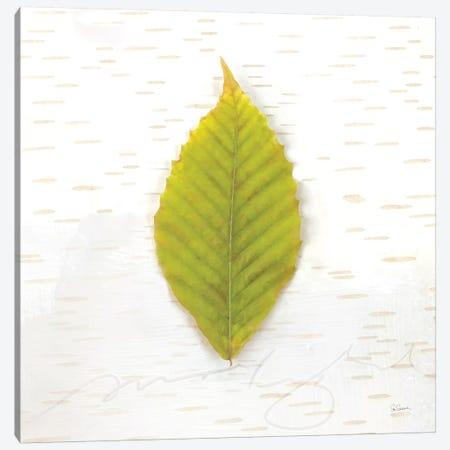 Autumn Colors IV Canvas Print #WAC6408} by Sue Schlabach Canvas Art