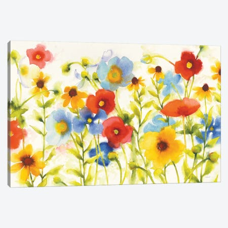 Americana Meadow I Canvas Print #WAC6409} by Shirley Novak Canvas Wall Art
